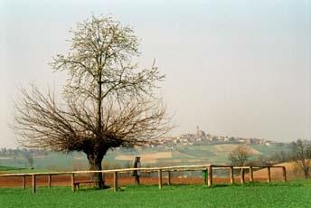granadoubletree